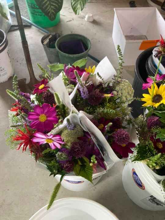 Large and small bouquets heading to the vermillion Farmer's market today!  New this week I've got some snap dragons and ...