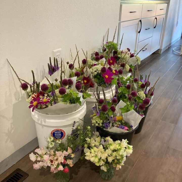 Flowers getting ready for Vermillion farmer's market today!  Large bouquets with allium, Queen Ann's Lace, Cosmos, bee b...