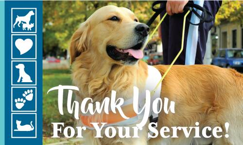 September is National Service Dog Month, a time devoted to raising awareness and showing our appreciation for the remark...