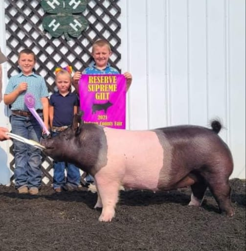Congratulations to the Abe Redden family for doing an outstanding job with this gilt. Reserve Grand and Champion Cross @...