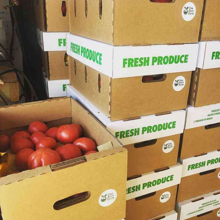400 pounds of tomatoes off to #communityfoodrescue